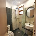 Double and Triple studio bathroom with shower
